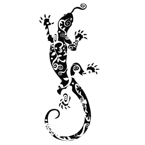 Le visuel salamandre - Dessin de salamandre a imprimer ...